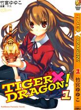 TIGER × DRAGON