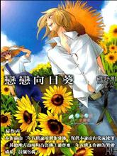 戀戀向日葵