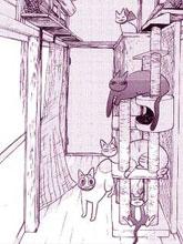 夫妻與貓的鐮倉記事簿