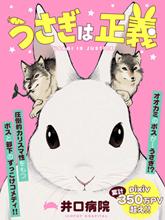 兔子即是正義