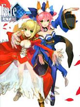 Fate/EXTRA畫集
