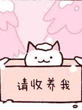 不可思議的貓咪 小九