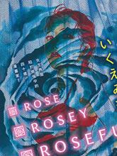 Rose Rosey Roseful BUD