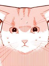 偶像貓貓~變成貓貓被偶像養起來了