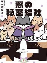 邪惡地下社團貓